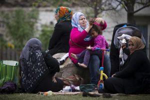 4753330_6_2d22_refugies-syriens-dans-le-parc_b29904c483e19f06cb4c172d2c6434c3